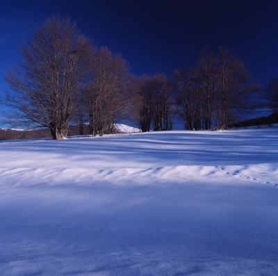 Χειμερινός29